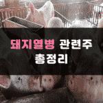 돼지열병 관련주